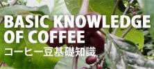 コーヒー豆基礎知識