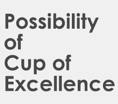 cup of excellenceから見えてくるもの specialty coffee wataru